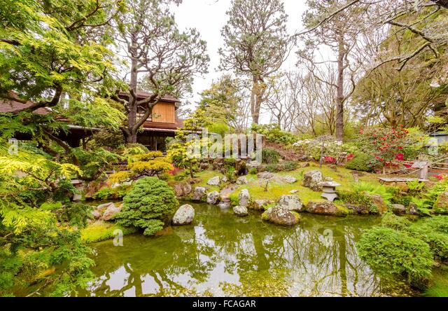 Japanese garden fish stock photos japanese garden fish for Koi pond japanese tea garden san francisco