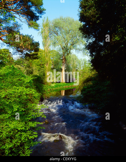 Co Offaly, River Camcor, Ireland - Stock Image