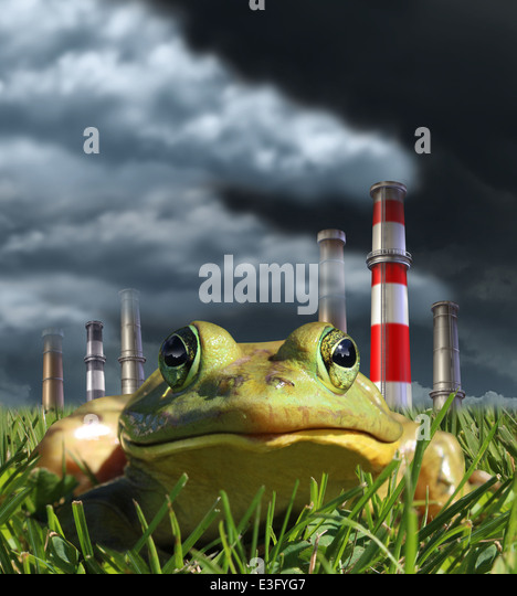 Environmental pollution and global warming concept with a frog sitting in front of a group of industrial smoke stacks - Stock Image