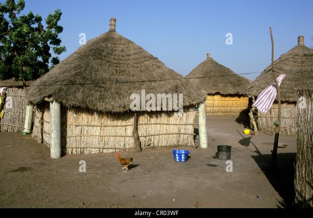 Senegal, village in the bush - Stock Image