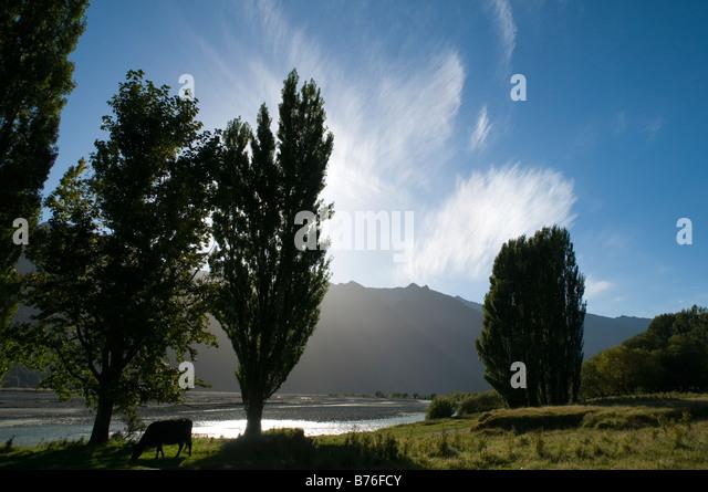 The Matukituki valley, Mount Aspiring National Park, South Island, New Zealand - Stock Image