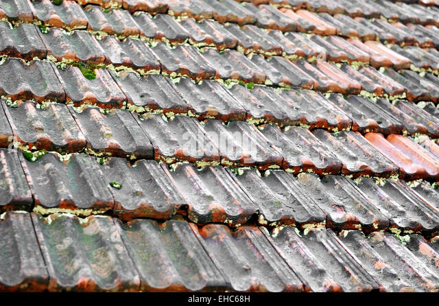lichen roof tiles stock photos lichen roof tiles stock. Black Bedroom Furniture Sets. Home Design Ideas