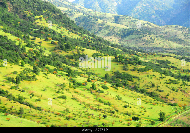 Chile wine country Colchagua Valley mountains - Stock Image