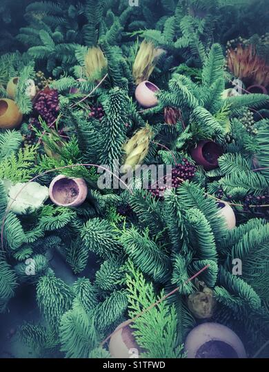 Green fern Christmas decoration - Stock Image
