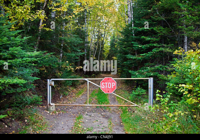 Stop sign on gate leading to woods - Stock-Bilder