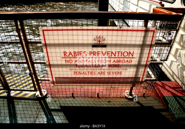 Rabies warning sign on River Thames pier, London - Stock Image