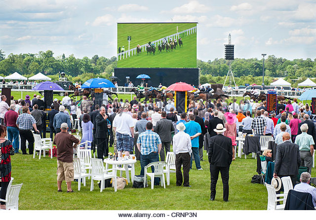 Royal Ascot horse racing meeting , spectators crowds people watch horses race by giant TV television screen - Stock Image