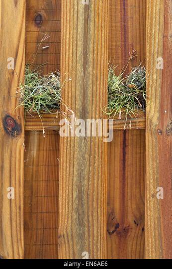 Stockade Fence Stock Photos Amp Stockade Fence Stock Images