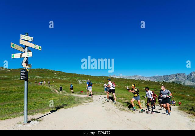 Chamonix trail running marathon, Chamonix, Rhone Alps, Haute Savoie, French Alps, France, Europe - Stock Image