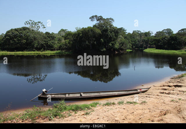 Brazil, Amazonas, Canoe on Amazon river - Stock Image