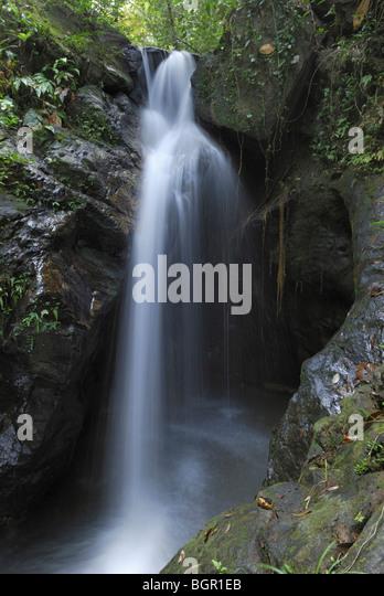 Ben's Bluff Waterfall, Cockscomb Basin Wildlife Sanctuary, Belize - Stock-Bilder