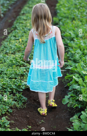 Young girl in dress walking through crop field - Stock Image