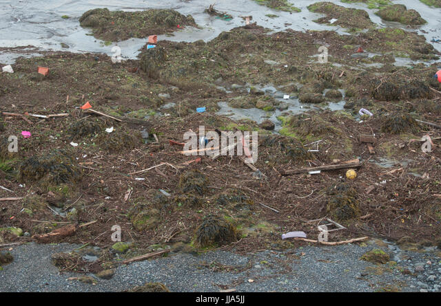 Coverack, Cornwall. 18th July 2017. Flash flood in coastal village of Coverack, Cornwall after heavy rain.  Debris - Stock Image