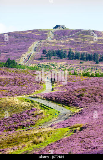 Flintshire, North, UK Weather. A lone walker walking along the Offa's Dyke and Clwydian Way paths in the Clwydian - Stock Image