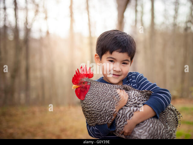 Portrait of a boy holding a rooster - Stock Image