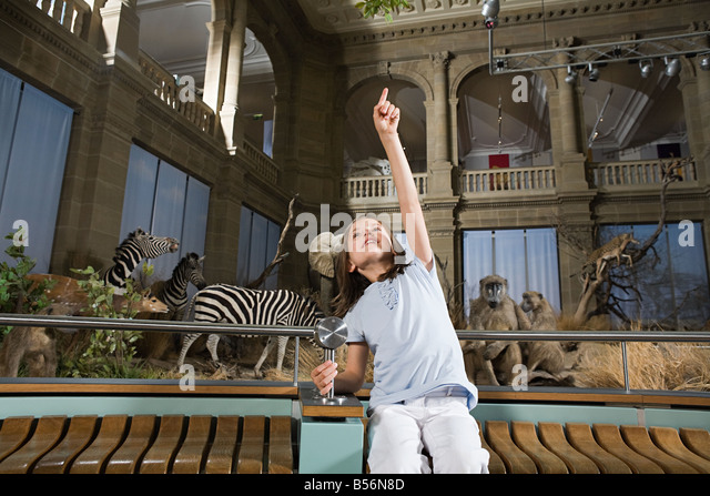 Girl in a museum with stuffed animals - Stock Image