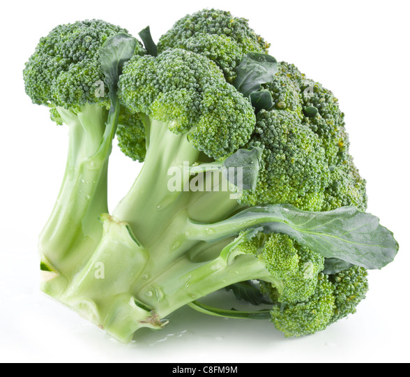 Broccoli on a white background. - Stock-Bilder