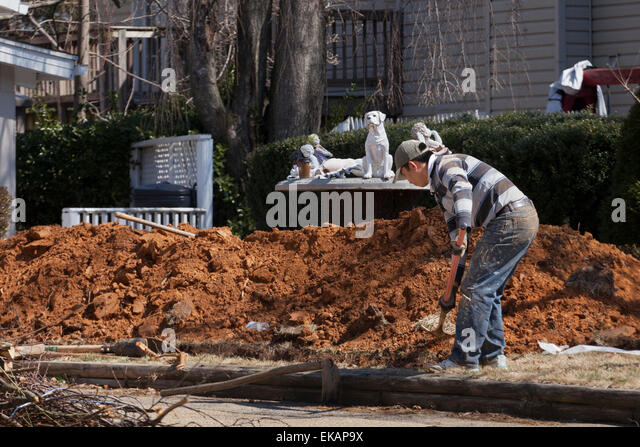 Man digging dirt - USA - Stock Image
