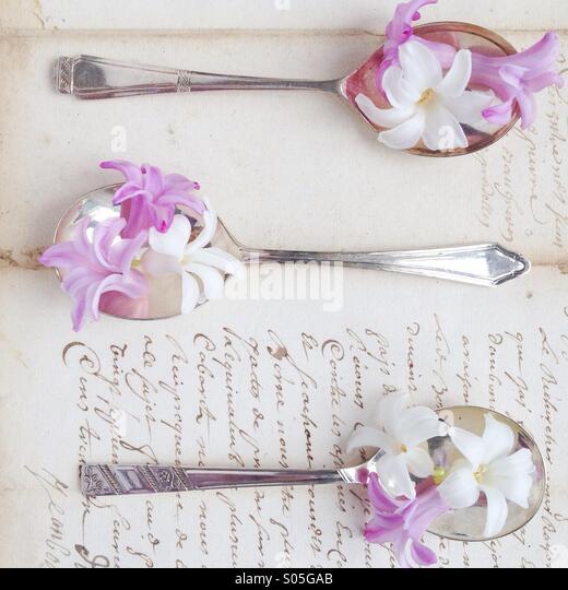 Hyacinths on vintage silver spoon and vintage letter - Stock-Bilder