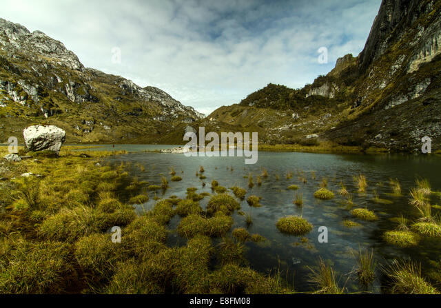 Indonesia, Papua, Jayawijaya, Maren Middle Lake of Lorents National Conservation Park - Stock Image