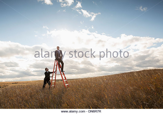 Businessmen with step ladder in field - Stock Image
