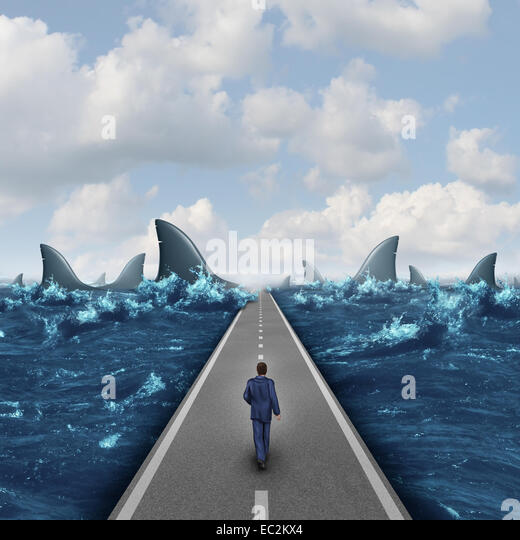 Headed for danger business concept as a man walking on a straight road towards a group of dangerous sharks as a - Stock-Bilder