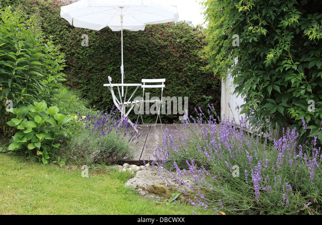romantic place with lavender and white garden furniture, parasol. Photo by Willy Matheisl - Stock Image