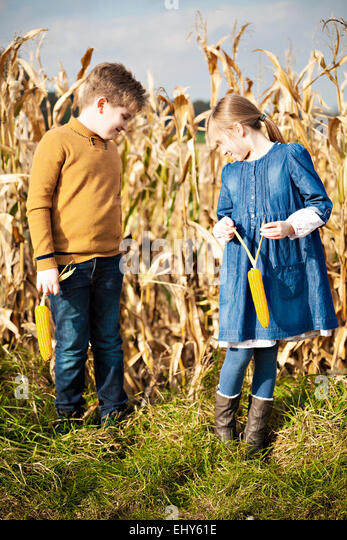 Girl and boy standing in maize field - Stock Image