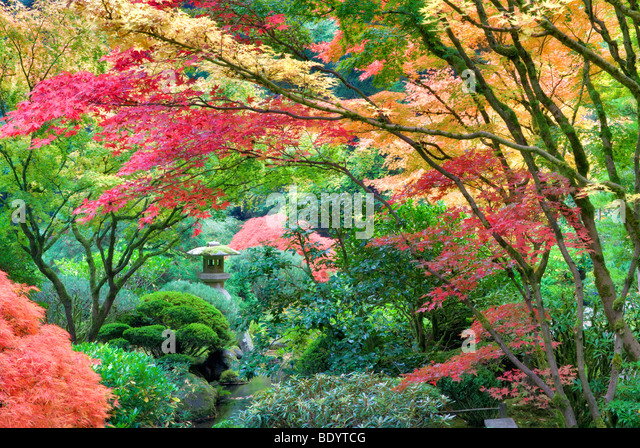 Sculpture and fall color at Portland Japanese Garden. Oregon - Stock Image