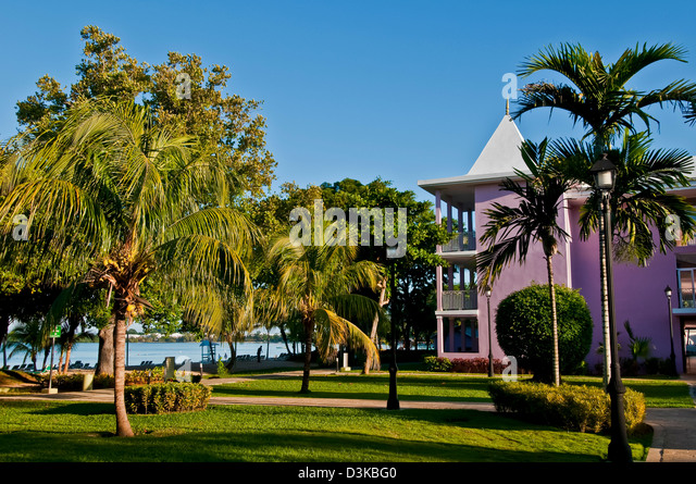 Palm trees and grounds of the Riu Palace Tropical Bay all-inclusive resort in Negril - Stock Image
