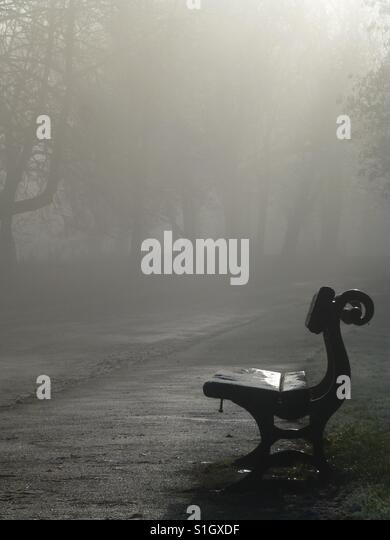 Lonely Park Bench On A Foggy Morning - Stock-Bilder