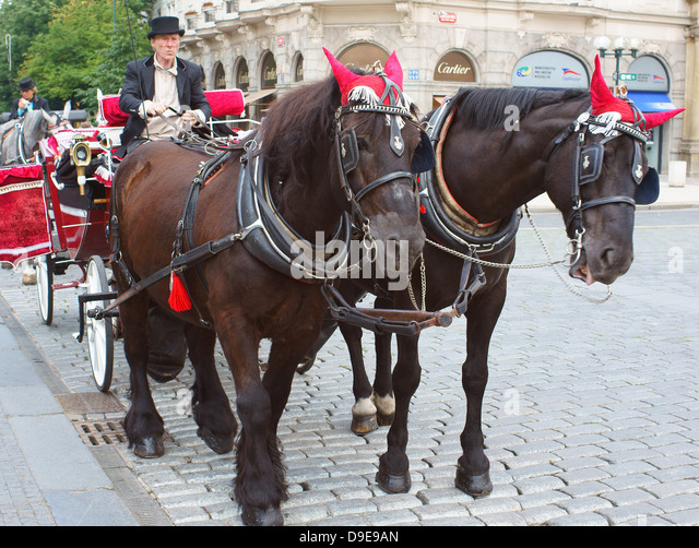 Prague Old Town horse drawn carriage for city tour - Stock Image