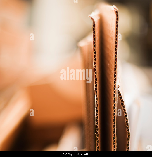 Cardboard - Stock Image