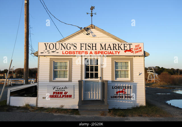 Youngs seafood stock photos youngs seafood stock images for Cape cod fish market