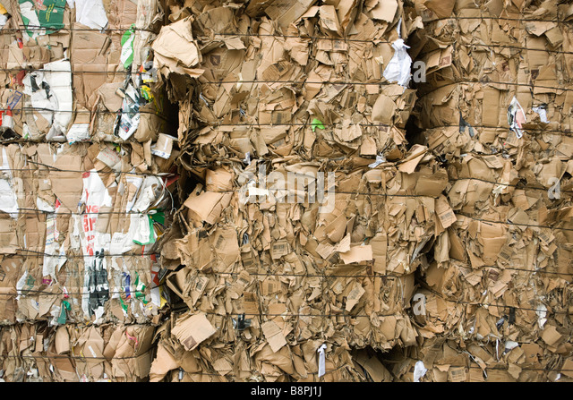 Cardboard bales, full frame - Stock Image