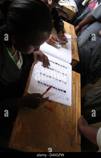 A IEBC clerk checks a voters ID details against the printed register in Morrison Primary School polling station - Stock Image