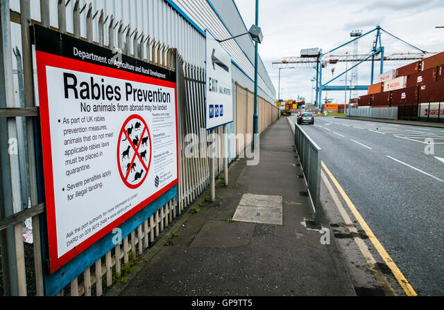 Rabies Prevention sign at the exit to the Port of Belfast, warning visitors that it is illegal to bring animals - Stock Image