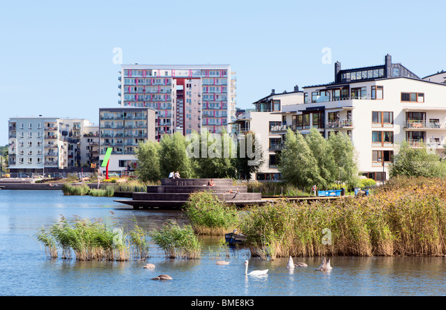Reeds in river near city - Stock Image