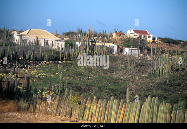 Aruba arid countryside homes with cactus fences - Stock Image