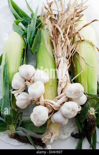 Cloves of fresh garlic with leeks - Stock Image