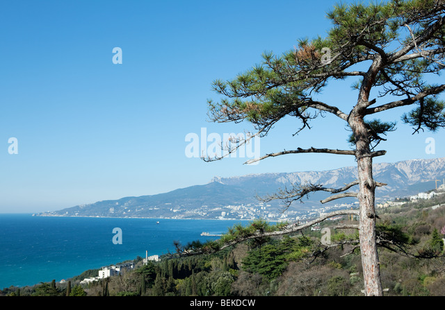 Landscape of Yalta bay, Crimea, Ukraine - Stock Image