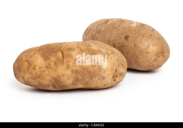 Russet Potato with white background - Stock Image