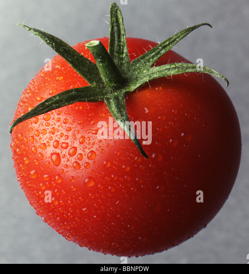 Cherry tomato on grey background - Stock Image