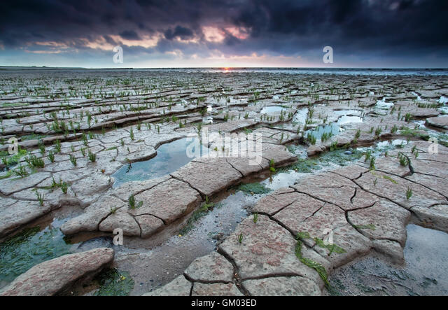 cracked mud on Watten sea coast at low tide - Stock Image