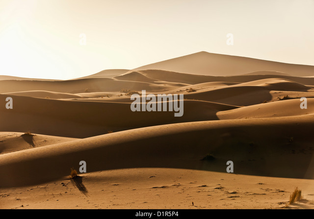 Morocco, M'Hamid, Erg Chigaga sand dunes. Sahara desert. - Stock Image