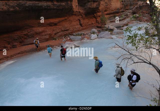 Hikers along the Havasu Creek, Colorado, United States of America, North America - Stock Image