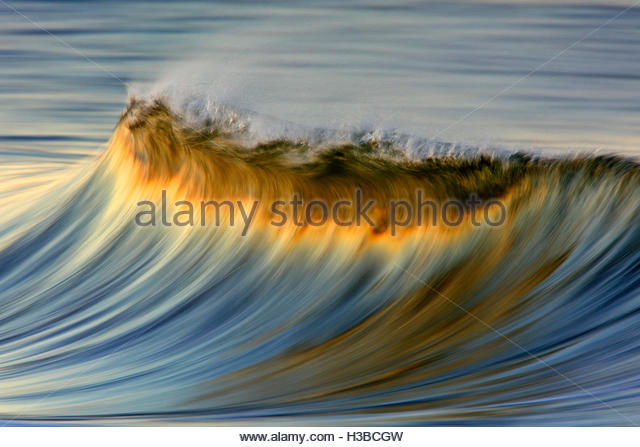 perfect wave breaking in sunrise light - Stock Image