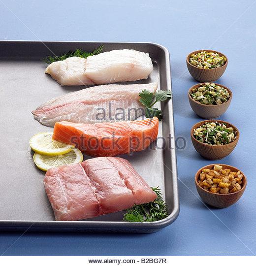 close up of raw tuna, salmon, haddock and sea bass - Stock Image