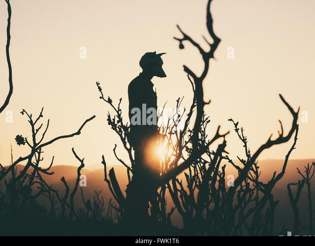 Silhouette Man With Animal Mask Standing On Landscape - Stock-Bilder