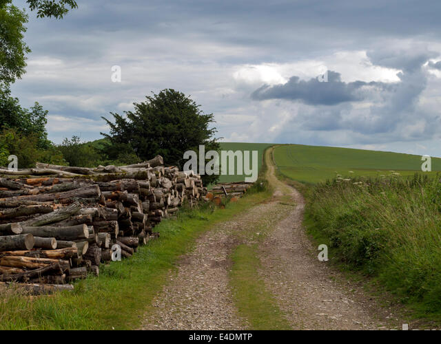 South Downs Way at Bignor Hill, West Sussex, England UK, looking east - Stock Image